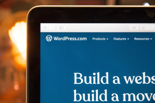 WordPress 404 Error with Advanced Custom Fields Plugin